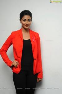 Pooja Hegde @ 100 Lailas Event