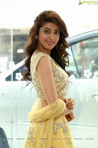 Pranitha Subhash - Telugu Film Actress