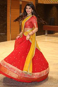 Sreeleela at Pelli SandaD Pre-Release Event