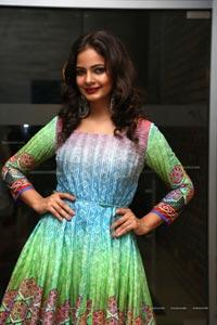 Veena Singh Hyderabad Model