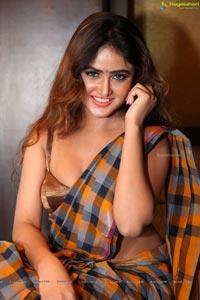 Sony Charishta in Saree