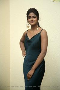 Dimple Hayati at Gaddalakonda Ganesh Success Meet