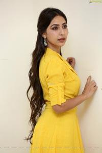 Kapilakshi Malhotra at VB Entertainments Venditera Awards