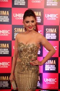 Malvika Sharma at SIIMA 2019