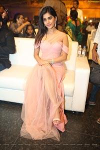 Nabha Natesh at Dadasaheb Phalke Awards South 2019