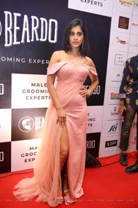 Nabha Natesh at Dadasaheb Phalke Awards South 2019