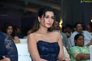 Payal Rajput at Dadasaheb Phalke Awards South 2019