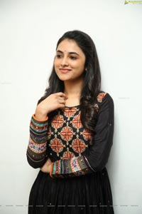 Priyanka Arul Mohan at Gang Leader Success Meet