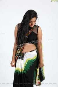 Heena Farheen in Printed Chiffon Saree