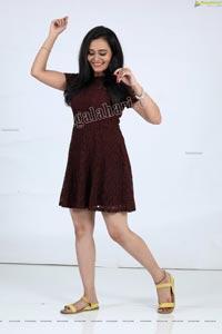 VJ Jaanu in Dark Brown Lace Skater Dress