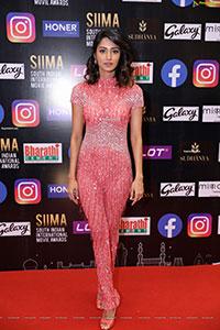Erica Fett HD Stills at SIIMA Awards 2021 Day 2