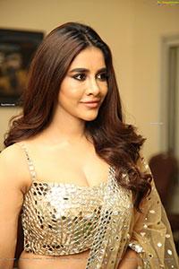 Nabha Natesh Stills at Maestro Movie Pre-Release