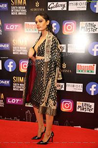 Sarah Harish at SIIMA Awards 2021