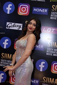 Sukanya at SIIMA Awards 2021 Day 2