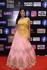 Vainidhi Jagadish at SIIMA Awards 2021 Day 2
