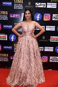 Vaisiri Jagadish at SIIMA Awards 2021 Day 2