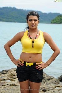 Tashu Kaushik Glamour Photos
