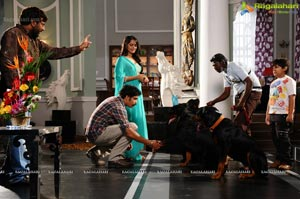RR Movie Makers Damarukam Working Shots