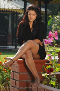Anjali Dwivedi Hot Photos