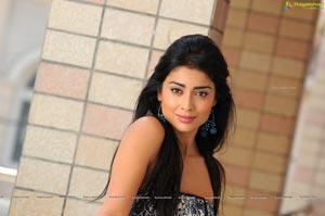 Shriya HD Wallpapers