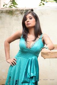 Bhanu Sri Mehra Hot Photos