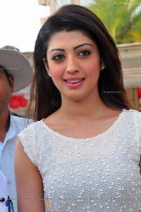 Tollywood Actress Praneetha